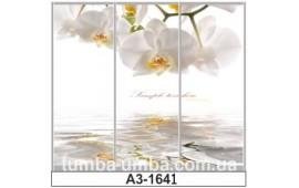 Фотопечать А3-1641 для шкафа-купе на три двери. Цветы