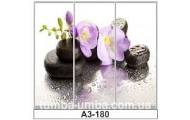 Фотопечать А3-180 для шкафа-купе на три двери. Цветы