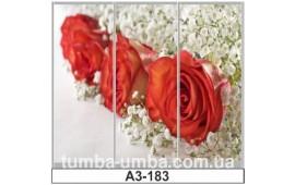 Фотопечать А3-183 для шкафа-купе на три двери. Цветы