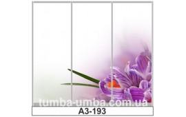 Фотопечать А3-193 для шкафа-купе на три двери. Цветы
