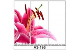 Фотопечать А3-196 для шкафа-купе на три двери. Цветы