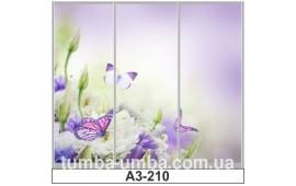 Фотопечать А3-210 для шкафа-купе на три двери. Цветы