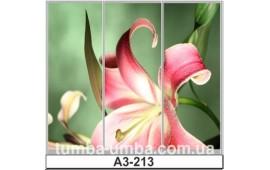 Фотопечать А3-213 для шкафа-купе на три двери. Цветы