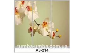 Фотопечать А3-214 для шкафа-купе на три двери. Цветы