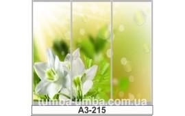 Фотопечать А3-215 для шкафа-купе на три двери. Цветы