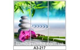 Фотопечать А3-217 для шкафа-купе на три двери. СПА