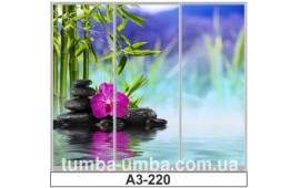 Фотопечать А3-220 для шкафа-купе на три двери. СПА