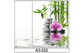 Фотопечать А3-222 для шкафа-купе на три двери. СПА