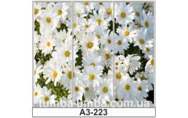 Фотопечать А3-223 для шкафа-купе на три двери. Цветы