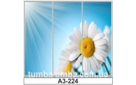 Фотопечать А3-224 для шкафа-купе на три двери. Цветы