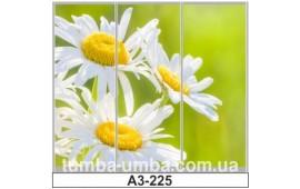 Фотопечать А3-225 для шкафа-купе на три двери. Цветы