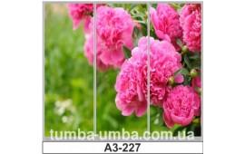 Фотопечать А3-227 для шкафа-купе на три двери. Цветы