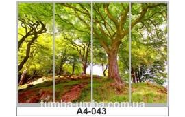 Фотопечать А4-043 для шкафа-купе на четыре двери. Парк