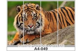 Фотопечать А4-049 для шкафа-купе на четыре двери. Тигр