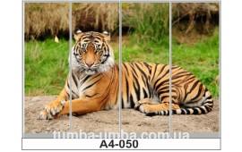 Фотопечать А4-050 для шкафа-купе на четыре двери. Тигр