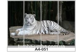 Фотопечать А4-051 для шкафа-купе на четыре двери. Тигр