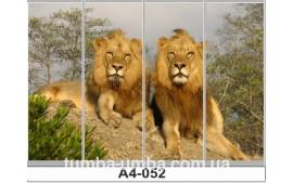 Фотопечать А4-052 для шкафа-купе на четыре двери. Львы