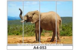 Фотопечать А4-053 для шкафа-купе на четыре двери. Слон
