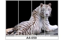 Фотопечать А4-059 для шкафа-купе на четыре двери. Тигр
