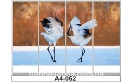 Фотопечать А4-062 для шкафа-купе на четыре двери. Птицы