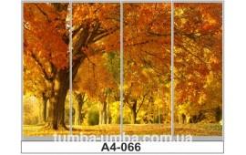 Фотопечать А4-066 для шкафа-купе на четыре двери. Парк