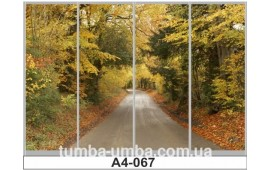 Фотопечать А4-067 для шкафа-купе на четыре двери. Парк