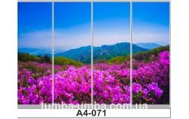 Фотопечать А4-071 для шкафа-купе на четыре двери. Природа