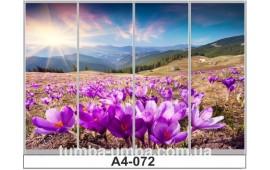 Фотопечать А4-072 для шкафа-купе на четыре двери. Природа