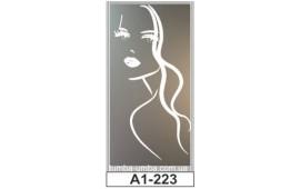 Пескоструйный рисунок А1-223 на одну дверь шкафа-купе. Девушка