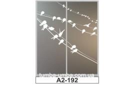 Пескоструйный рисунок А2-192 на две двери шкафа-купе. Птицы