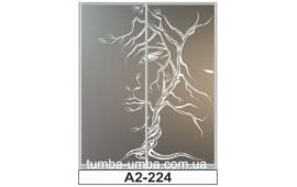 Пескоструйный рисунок А2-224 на две двери шкафа-купе. Девушка