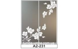 Пескоструйный рисунок А2-231 на две двери шкафа-купе. Цветы