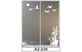 Пескоструйный рисунок А2-239 на две двери шкафа-купе. Природа