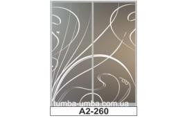 Пескоструйный рисунок А2-260 на две двери шкафа-купе. Узор