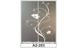 Пескоструйный рисунок А2-283 на две двери шкафа-купе. Цветы