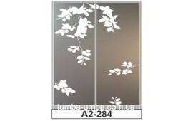 Пескоструйный рисунок А2-284 на две двери шкафа-купе. Цветы