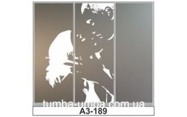 Пескоструйный рисунок А3-189 на три двери шкафа-купе. Романтика