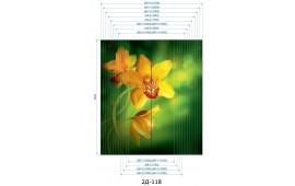 Фотопечать 2Д-118 для шкафа-купе на две двери. Цветы