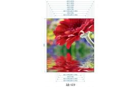 Фотопечать 2Д-123 для шкафа-купе на две двери. Цветы