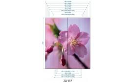 Фотопечать 2Д-157 для шкафа-купе на две двери. Цветы