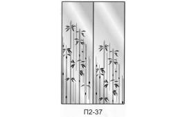 Пескоструйный рисунок П2-37 на две двери шкафа-купе. Узор