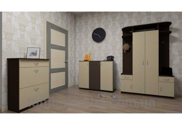 Фото готовая прихожая Галина со шкафом в коридоре дешево от производителя с доставкой по всей Украине