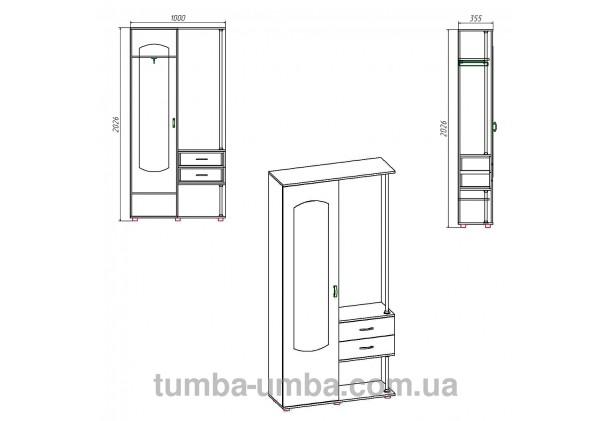 Фото размеры готовой прихожей Надежда со шкафом и зеркалом в коридор дешево от производителя с доставкой по всей Украине