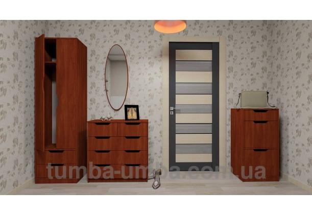 Фото недорогой готовый стандартный платяной Шкаф Фаина ДСП для одежды с выдвижными ящиками в интерьере прихожей дешево от производителя с доставкой по всей Украине