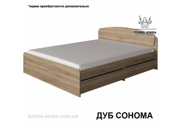 фото стандартная кровать Астория-140 см с ящиками для хранения Алекс в спальню, на дачу или для общежития в цвете дуб сонома дешево от производителя с доставкой по всей Украине