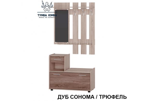 Фото готовая прихожая Тандем с зеркалом в интерьере в коридор в цвете дуб сонома / трюфель дешево от производителя Алекс с доставкой по всей Украине
