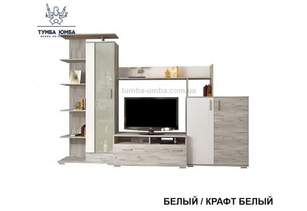 фото недорогая стенка в гостиную Поло в цвете крафт белый ДСП Алекс в интернет-магазине мебели эконом-класса TUMBA-UMBA™