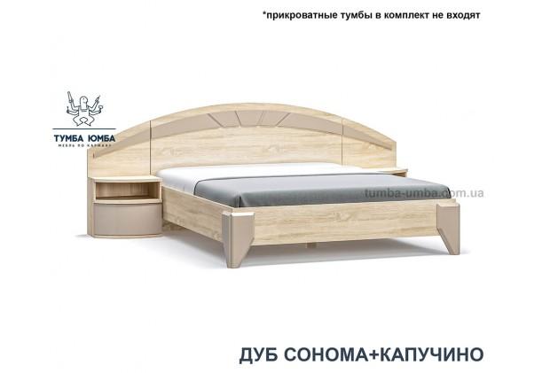 фото стандартная двуспальная кровать Аляска 160 см в спальню в цвете дуб сонома дешево от производителя с доставкой по всей Украине