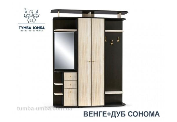 Фото готовая прихожая Блюз со шкафом и зеркалом в коридор в цвете венге и дуб сонома дешево от производителя с доставкой по всей Украине