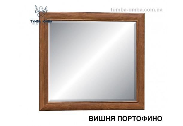 Фото недорогое готовое Зеркало Даллас на стену в зал, прихожую, спальню или офис в цвете вишня дешево от производителя с доставкой по всей Украине